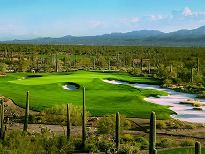 Golf Club at Dove Mountain - Wild Burro/Tortolita