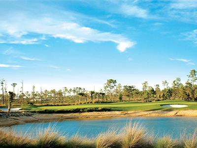 Magnolia Landing Golf
