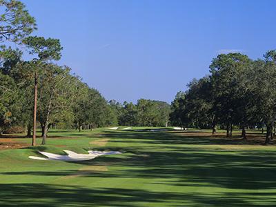 Ocala National Golf Club