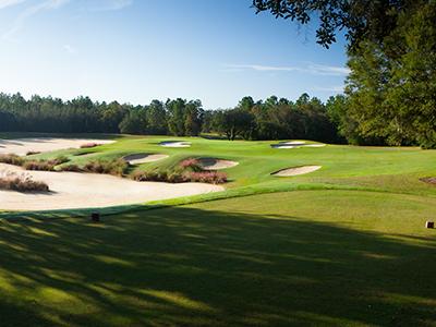 Skyview at Terra Vista Golf