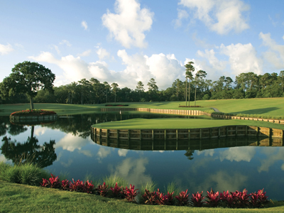 THE PLAYERS Stadium Course at TPC Sawgrass, Hole #17