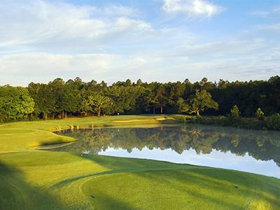 The Oaks Golf