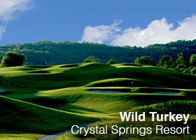 Crystel Springs Resort - Wild Turkey