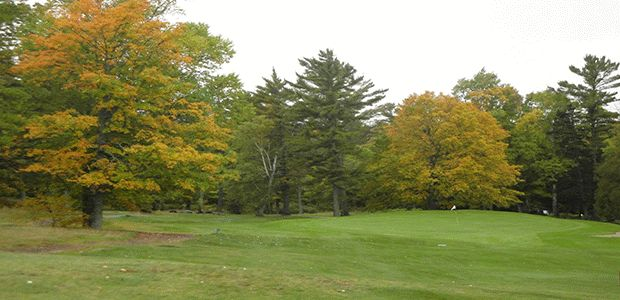 Upper Peninsula Golf