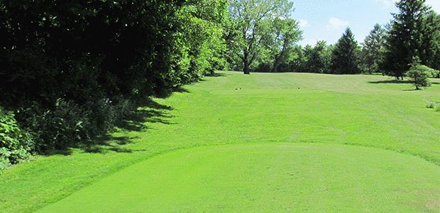 Meadowbrook Golf Course 1