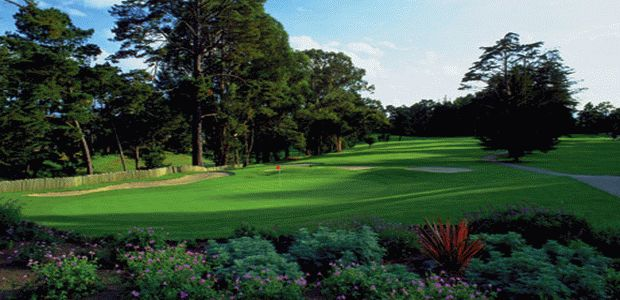 Hollister Golf