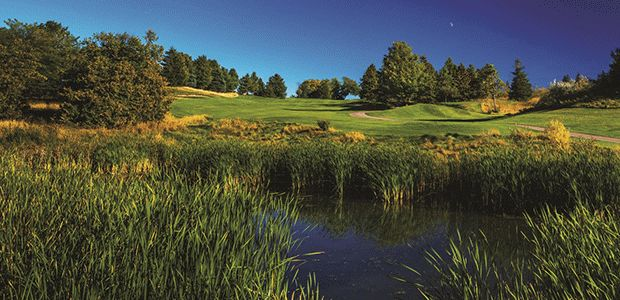 Spruce Run - Grand Traverse Resort and Spa 0