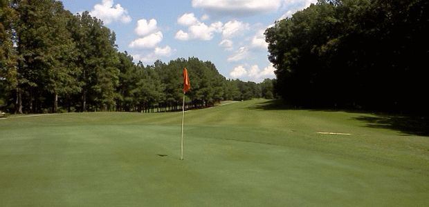 The Greens At Tanyard Golf Club 0