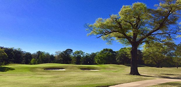 Highland Oaks Golf Course - Magnolia 4