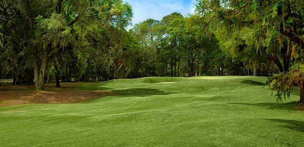 Palmetto Hall Plantation - Arthur Hills Course