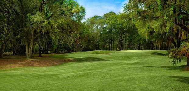 Palmetto Hall Plantation - Robert Cupp Course