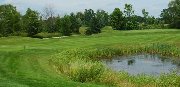 Flint Golf