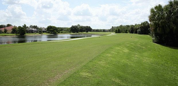 The Stoneybrook Golf Club of Estero 2