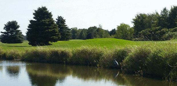 Pigeon Creek Golf Course 2