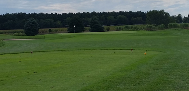 Pigeon Creek Golf Course 5