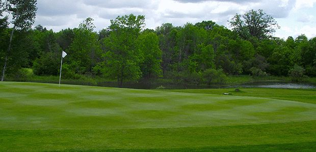 Mapleview Golf Course 2