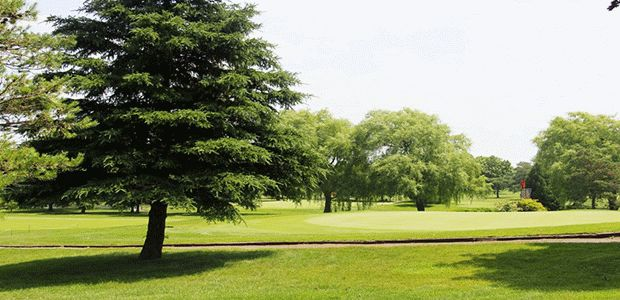 Victoria Park East Golf Club 0