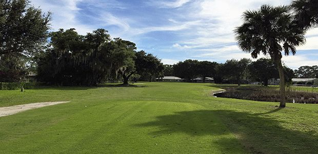The Palms Golf Club at Forest Lakes 2