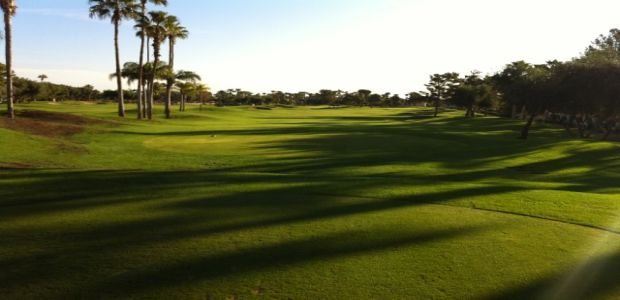 The Phoenician - Desert Course 7