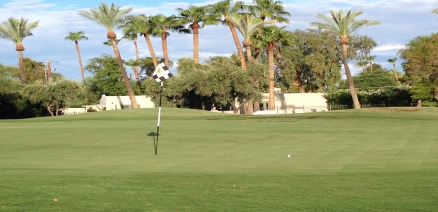 The Phoenician - Oasis Course 3