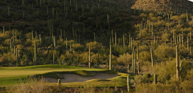 Starr Pass Golf Club - Coyote 3