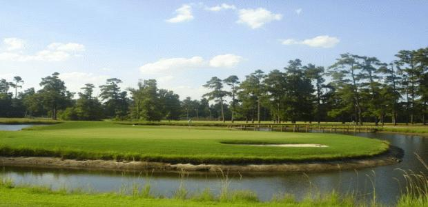 Shannon Greens Golf Club 1