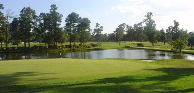 Shannon Greens Golf Club 3
