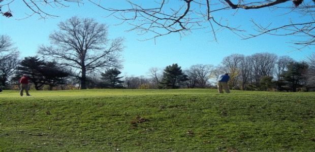 Clearview Park Golf Course 4