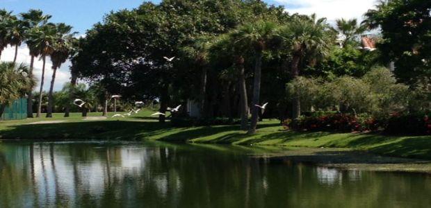 Terra Ceia Bay Golf Club Tee Times Palmetto Fl Teeoff Com