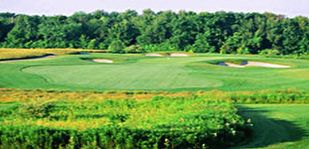 Forest City National Golf Club 3