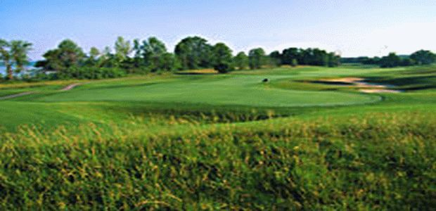 Forest City National Golf Club 4