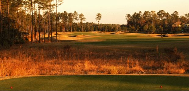 St. Johns Golf & Country Club 2