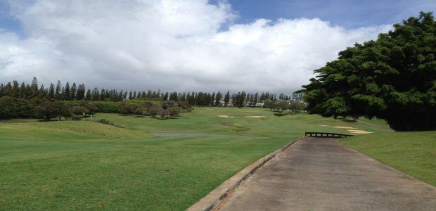 Kapalua - Plantation Course Tee Times - Lahaina, Maui, HI ...