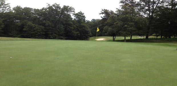 Forest Greens Golf Club 5