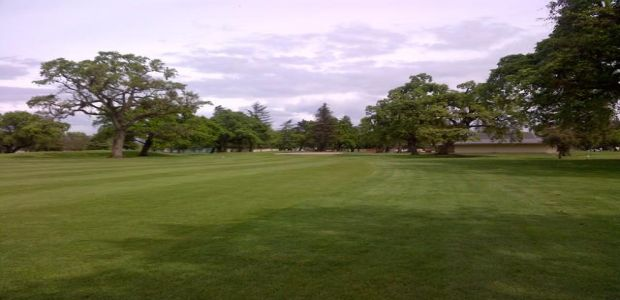 Swenson Park Golf Club 5