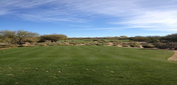 Troon North Golf Club - Monument Course 29