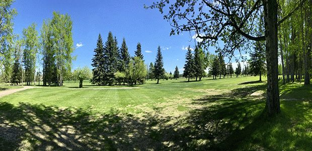 Edson Golf Club 0