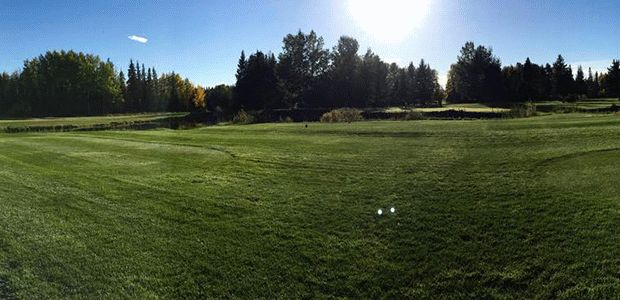 Edson Golf Club 1
