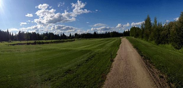 Edson Golf Club 2