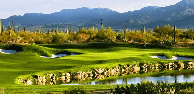 Golf Club at Dove Mountain 0