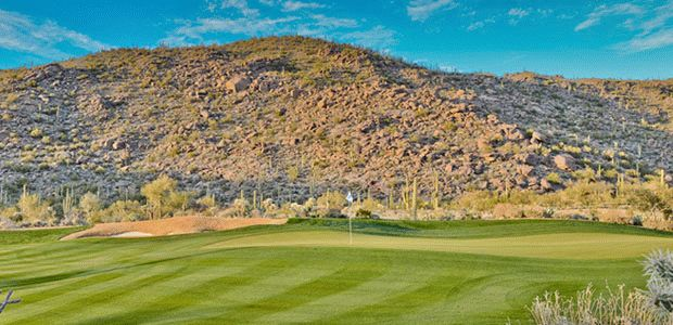 Golf Club at Dove Mountain 3