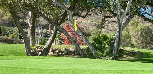 Welk Resort - Oaks 2