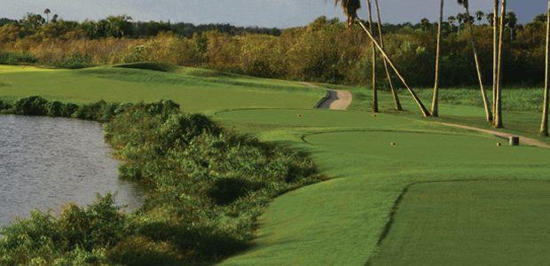 Stoneybrook Golf Club At Heritage Harbour Tee Times