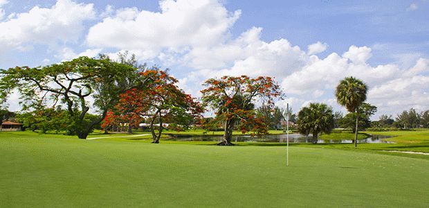 The Senator Course at Don Shula's Golf Club 0
