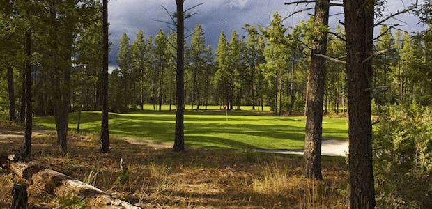 Bootleg Gap Golf Course-Recreation 9 Course
