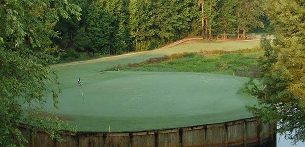 Colquitt Golf