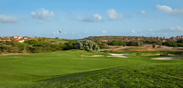 Aruba Golf Course Tee Times