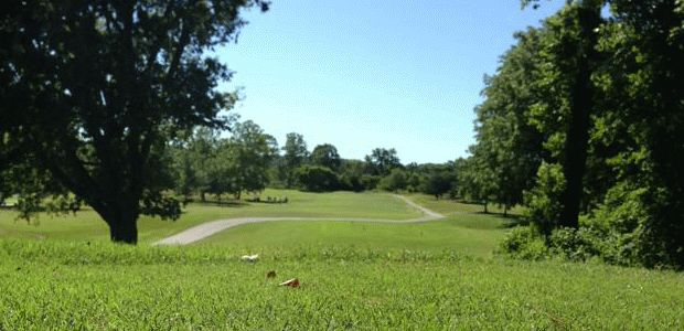 Kingswood Golf Course 2