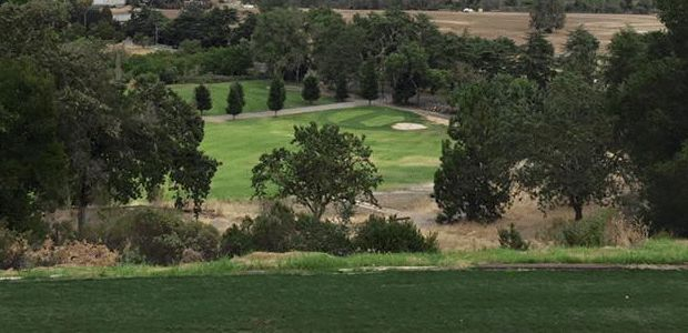 Gilroy Golf Course 3