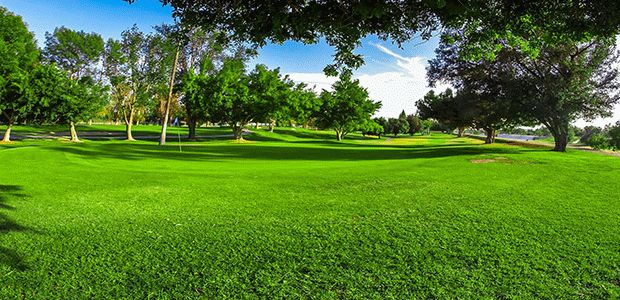 River View Golf Course (CA) 1